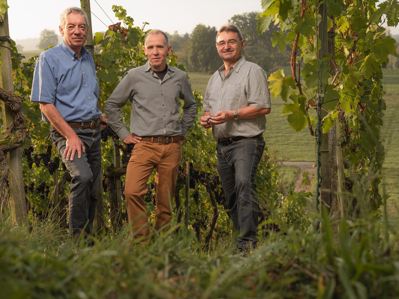 Weinkompetenz 20.09.18-5
